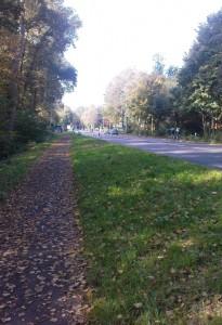 Rösrather Straße